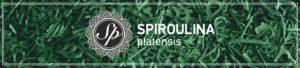 spiroulina plapensis, φλούδα σπιρουλίνας, flakes σπιρουλίνας, spirulina flakes, spirulina, flakes, φλούδα